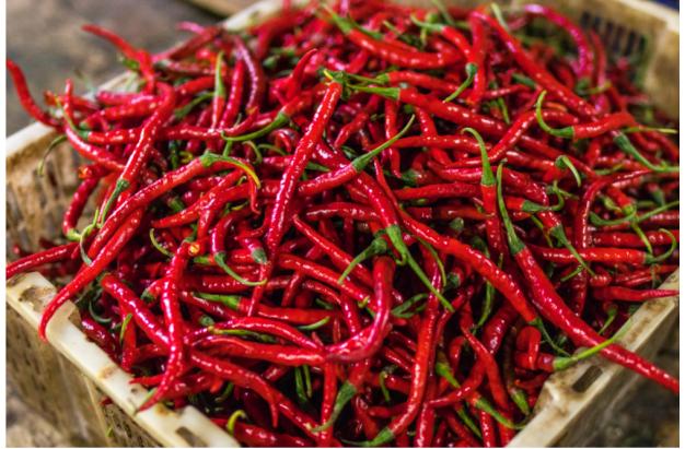 La 'nduja: storia e miti del sapore più iconico della Calabria